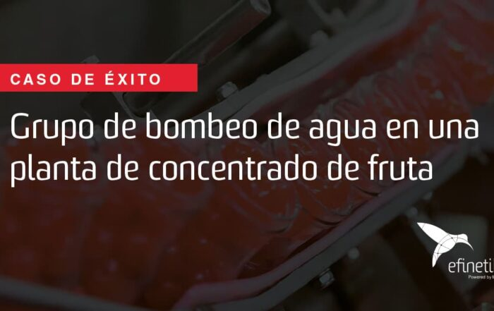 Caso de éxito fábrica fruta
